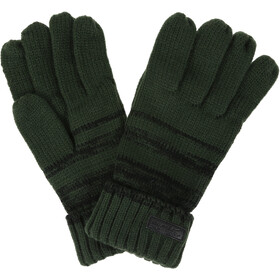 Regatta Davion Gloves Men bayleaf